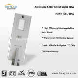 Cer RoHS IP65 6W-80W All Garten Light Integrated Solar Street Light im Ein-Motion Sensor Light Sensor LED Street Lamp Solar