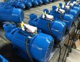 Bomba elétrica 0.75kw/1HP da agua potável Pkm80