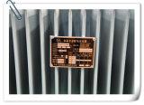 Voll-Dichtung ölgeschützter Typ formloser Legierungs-Transformator für Stromversorgung