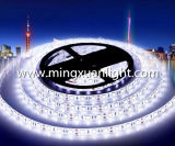 12V 3528 300SMD impermeabilizan la luz de tira flexible decorativa de IP65 LED