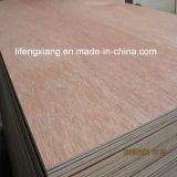 Chapas de madera Fabricante / contrachapado Lápiz Cedar Kuering Bingtangor abedul Okoume