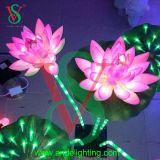 점화된 실내 장식적인 연꽃 빛