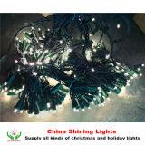 A cortina impermeável ao ar livre padrão do diodo emissor de luz do UL ilumina a decoração do feriado do Natal