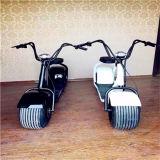 Мотоцикл/Citycoco колеса черноты 2 электрический мощный с индикацией СИД