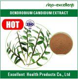 Порошок выдержки естественного Dendrobium Candidum