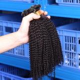 Remy 융해 머리 연장 자연적인 각질 캡슐은 전 U/Nail 끝 머리 연장 인간적인 100g 순수한 Malaysian 각질을 접착시켰다