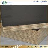 M. Glue Building Grade Film de faisceau d'eucalyptus de 1220*2440*15mm a fait face au contre-plaqué
