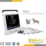 의료 기기 Ts20V 초음파 화상 진찰 스캐너