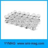 販売のための強い希土類磁気押しPinの磁石のネオジム