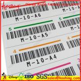 Código de barras personalizado colorido das etiquetas do número de série da impressão
