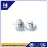Ribattino dell'acciaio o dell'argento con il ribattino di punto di alta qualità