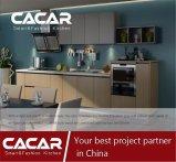 2017新しいデザイン現代様式の特別なNanoパネルの食器棚(CA01-02)