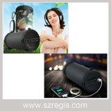 Altoparlante attivo professionale senza fili portatile di Bluetooth mini