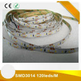 600leds SMD 3014 LED Luz de tira flexible
