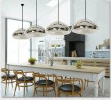 Hot Sell Modern Void Light Mini poudré en verre à la main en acier inoxydable Lampadaire à LED pour salle à manger
