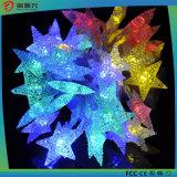 별에 의하여 형성된 LED 태양 빛이 크리스마스 장식적인 태양 끈에 의하여 점화한다