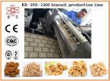 Industrieller Biskuit Kh-600, der Maschinerie aufbereitet