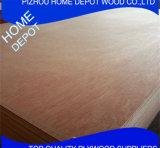 Contre-plaqué commercial de cèdre de crayon de Bintangor/Okoume/Red pour les meubles ou la décoration