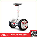 2개의 바퀴 각자 균형을 잡는 스쿠터 소형 Ninebot 전기 2륜 전차