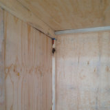 grado de empaquetado de la base BB/CC del álamo de la madera contrachapada de la madera contrachapada del pino de 15m m