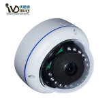 AhdのVandal-ProofドームIR CCTVの監視カメラ