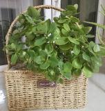 (BC-SF1016)環境に優しいハンドメイドの自然なわらの花のバスケット