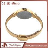 方法大きい円形のダイヤルのステンレス鋼の腕時計