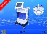顔療法+Skinの心配のための多機能PDT LEDライトは、皮の再生の鉱泉機械SPA990を促進する