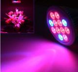 Buoni E27 di vendita LED dell'interno si sviluppano chiari per il giardino o la serra 12W 24W 36W