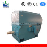 motore a corrente alternata Trifase ad alta tensione di raffreddamento Air-Air di serie di 6kv/10kv Ykk Ykk6304-10-900kw