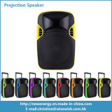 12 polegadas Professional Audio PA LED Projection Speaker para venda