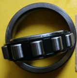 Rodamientos de rodillos cilíndricos de las ventas calientes de la fábrica, rodamiento de rodillos (N307)