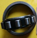 Rolamentos de rolo cilíndricos das vendas quentes da fábrica, rolamento de rolo (N307)