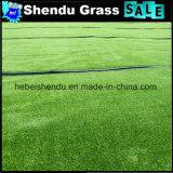 grama da paisagem de 15mm com luz - cor verde