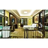 Mobília de cinco estrelas do quarto do hotel do desenhador profissional