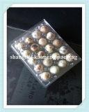 20 agujeros de plástico Bandejas para huevos de codorniz Embalaje