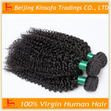 Pelo humano brasileño del pelo rizado del pelo de la Virgen