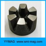 AlNiCo del magnete del rotore