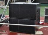 PRO AudioSubwoofer voor de Spreker van de Serie van de Lijn (fs-218)