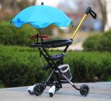Kind-Dreiradbaby-Wanderer-Baby-Spaziergänger-faltendes Dreirad