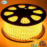 ETL aufgeführtes LED Streifen-Licht 3000k/6000k des Farbband-60LED 5050 LED