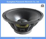 15fw76 haut-parleur audio professionnel Woofer 700W