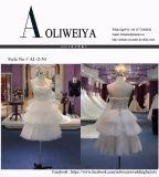 Nuovo vestito da cerimonia nuziale di Short di arrivo 2017 con il pannello esterno a file
