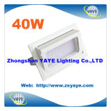 Yaye 18 Hot Sell Ce / RoHS Agrandissement COB 30W 40W LED Tunnel Light / LED Flood Lighting avec garantie 3 ans