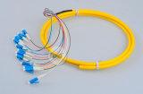 Mini divisor óptico 1X4 1X16 1X32 del PLC de fibra de la fábrica