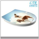 Couverture lumineuse acrylique de siège des toilettes d'impression
