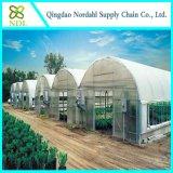상업적인 온실, 농업 온실