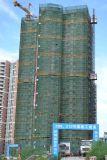 De Machines van de Lift van de Lift van het Hijstoestel van de bouw