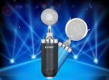 Pequeña canción de la red de ordenadores K del micrófono de condensador de las botellas