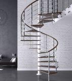 屋外の螺旋階段の鉄デザイン